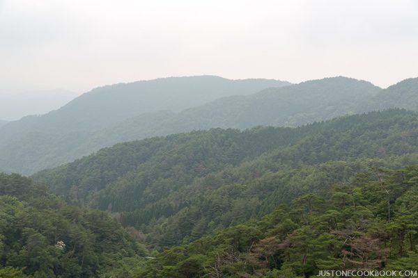 arima onsen-8273