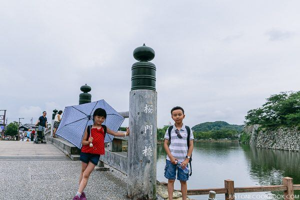 two children standing next to a bridge in front of a moat
