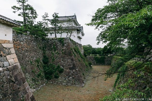 nagoya castle-9828