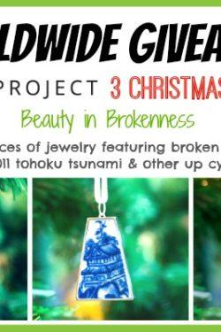 Nozomi Project Giveaway | JustOneCookbook.comNozomi Project Giveaway | JustOneCookbook.com