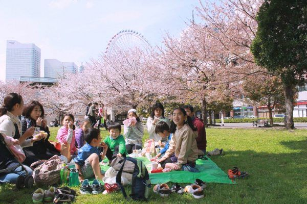 Friends and family are having picnic at a park in Hanami season.
