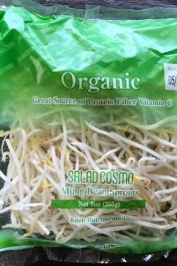 Bean Sprouts