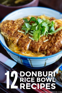 12 Donburi Rice Bowl Recipes