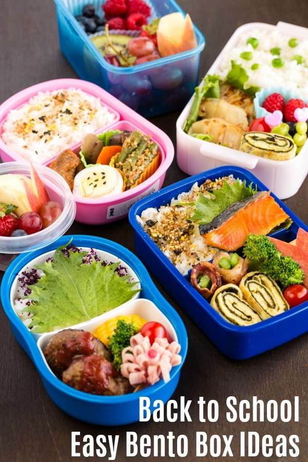 Back to School Easy Bento Box Ideas | Easy Japanese Recipes at JustOneCookbook.com