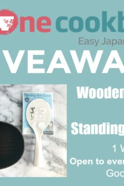 Wooden Bento Box Giveaway | JustOneCookbook.com
