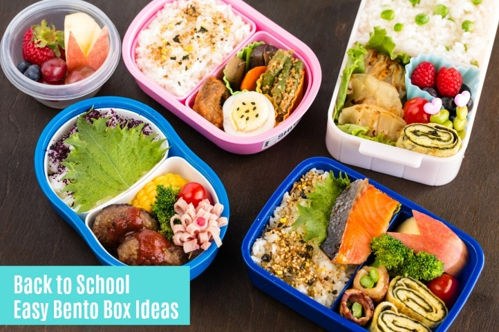 Back To School Easy Bento Box Ideas Just One Cookbook