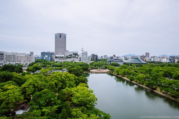 view of Hiroshima City from the top of the Hiroshima Castle | JustOneCookbook.com