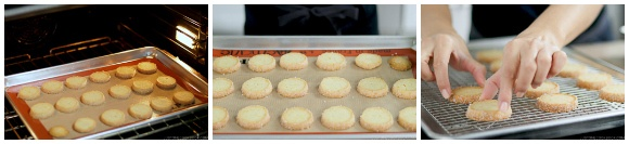 Meyer Lemon Cookies 15