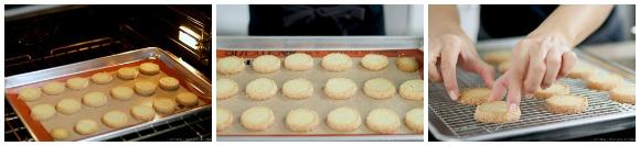 Meyer Lemon Cookies 15