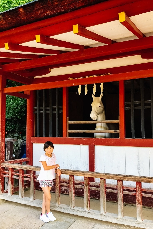 horse status Miyajima | JustOneCookbook.com