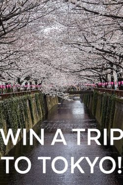 TASTE Magazine win a trip to Tokyo giveaway on Just One Cookbook