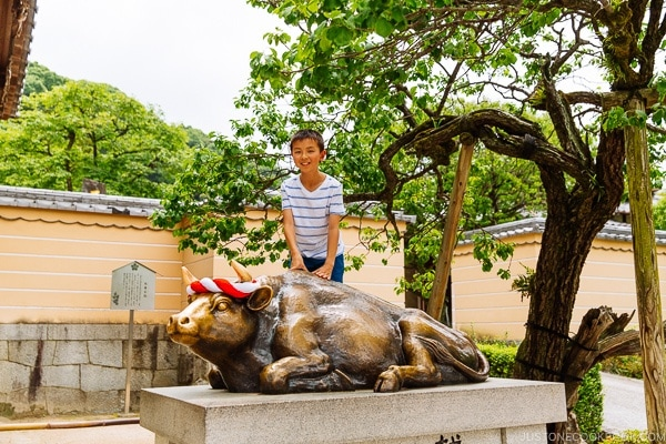 child on bronze bull (Goshingyu 御神牛) Dazaifu - Fukuoka Travel Guide | justonecookbook.com