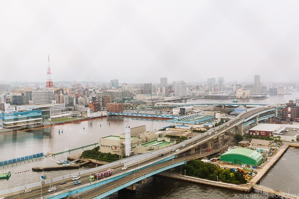 View of Fukuoka city from Hakata Port Tower - Fukuoka Travel Guide | justonecookbook.com