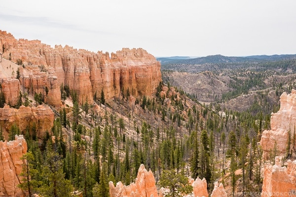 swamp canyon - Bryce Canyon National Park Travel Guide | justonecookbook.com