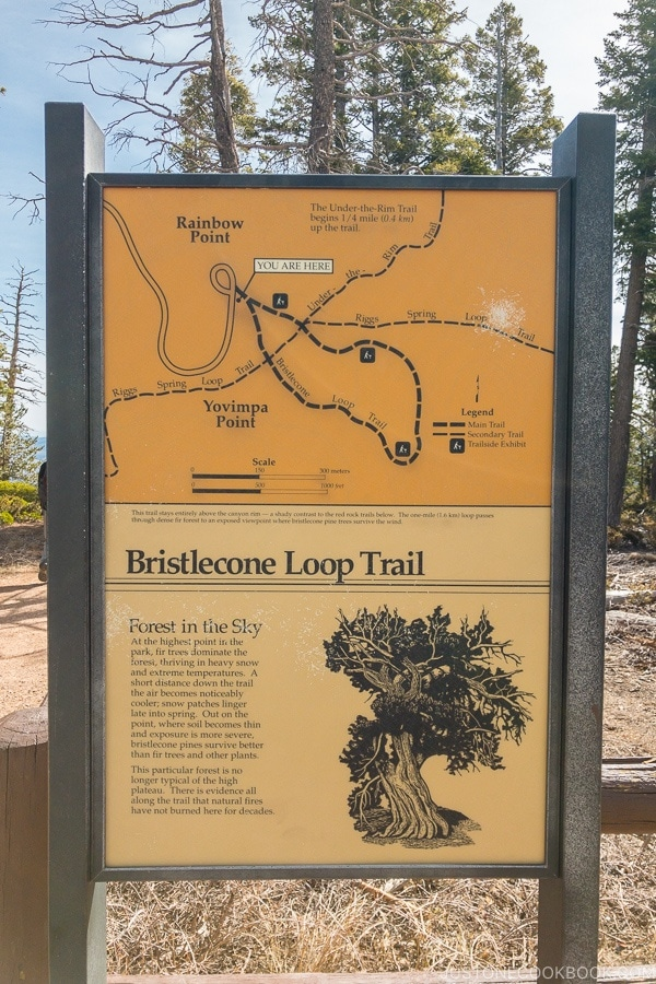 Bristlecone Loop Train Map sign - Bryce Canyon National Park Travel Guide | justonecookbook.com
