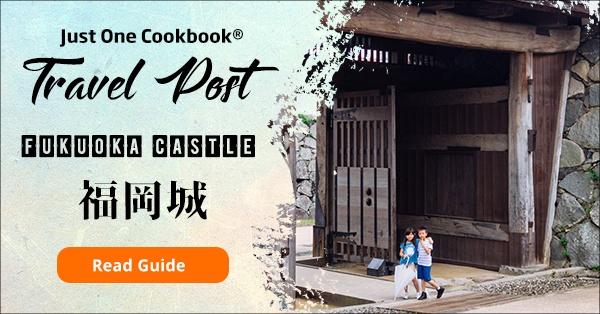 Fukuoka Castle - Fukuoka Travel Guide | justonecookbook.com