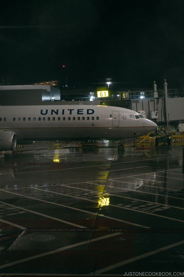United airplane on the SFO tarmac - Zion National Park Travel Guide | justonecookbook.com