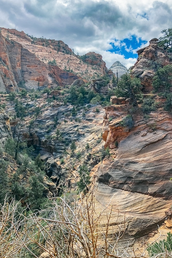 view of canyon from Canyon Overlook Trail - Zion National Park Travel Guide | justonecookbook.com