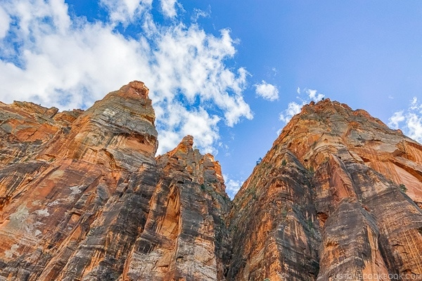 view of canyon wall from Zion Mount Carmel Highway - Zion National Park Travel Guide | justonecookbook.com