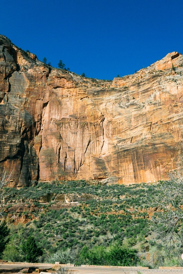 view of Angels Landing Trail from Big Bend - Zion National Park Travel Guide | justonecookbook.com