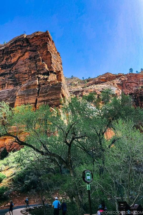 At shuttle stop 7 - Zion National Park Travel Guide | justonecookbook.com