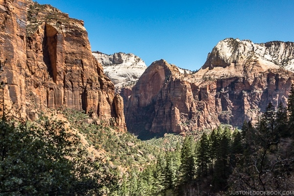 looking at the hills from the Emerald Pools Trail - Zion National Park Travel Guide | justonecookbook.com