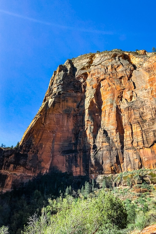 view of the scenery from Big Bend - Zion National Park Travel Guide | justonecookbook.com