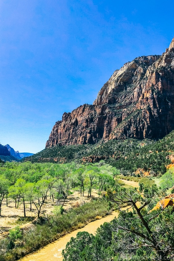 view of Zion Canyon from Kayenta Trail - Zion National Park Travel Guide | justonecookbook.com