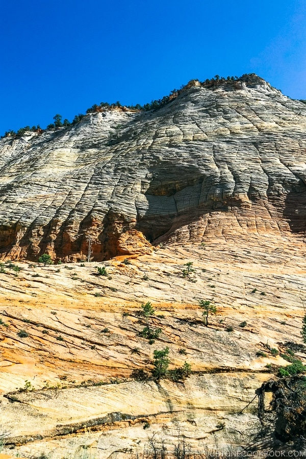 view of Sandstone hills - Zion National Park Travel Guide | justonecookbook.com