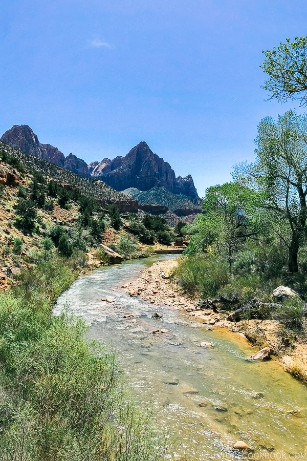 view of virgin river from pedestrian bridge on Pa'rus Trail - Zion National Park Travel Guide | justonecookbook.com