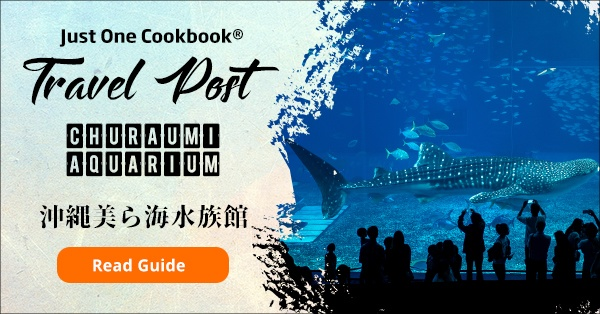 Churaumi Aquarium Guide | justonecookbook.com