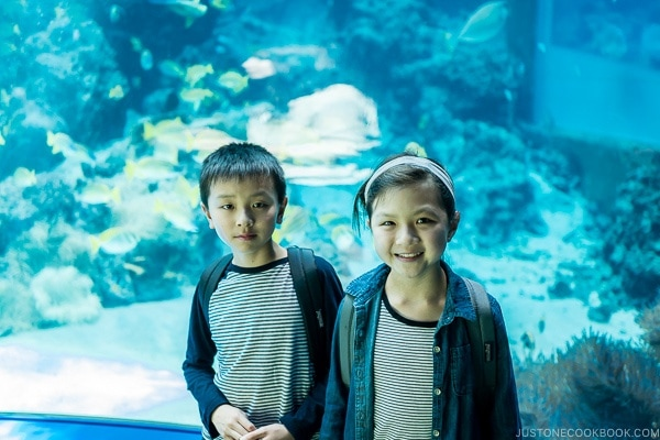 children in front of fish tank at Churaumi aquarium at Ocean Expo Park Okinawa | justonecookbook.com