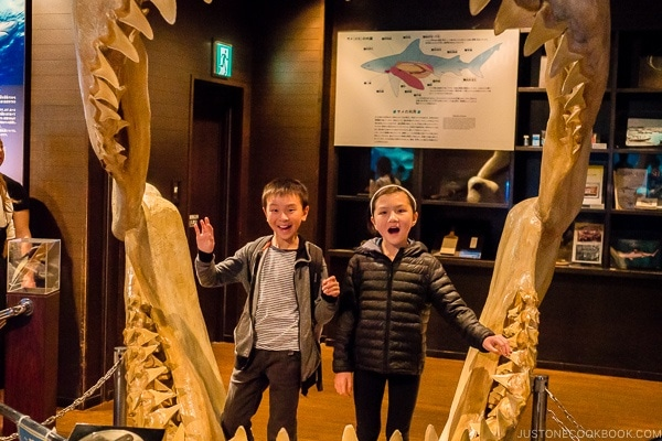 children next to model of a giant shark mouth at Churaumi aquarium at Ocean Expo Park Okinawa | justonecookbook.com