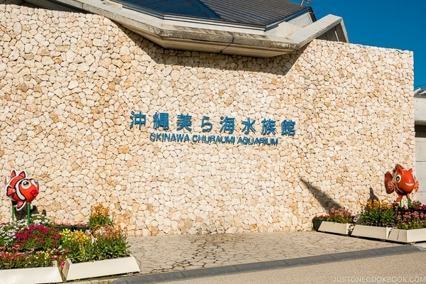 Okinawa Churaumi aquarium at Ocean Expo Park Okinawa | justonecookbook.com