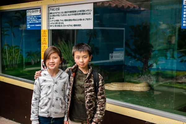 children in front of albino snake at Habu Park - Okinawa World | justonecookbook.com