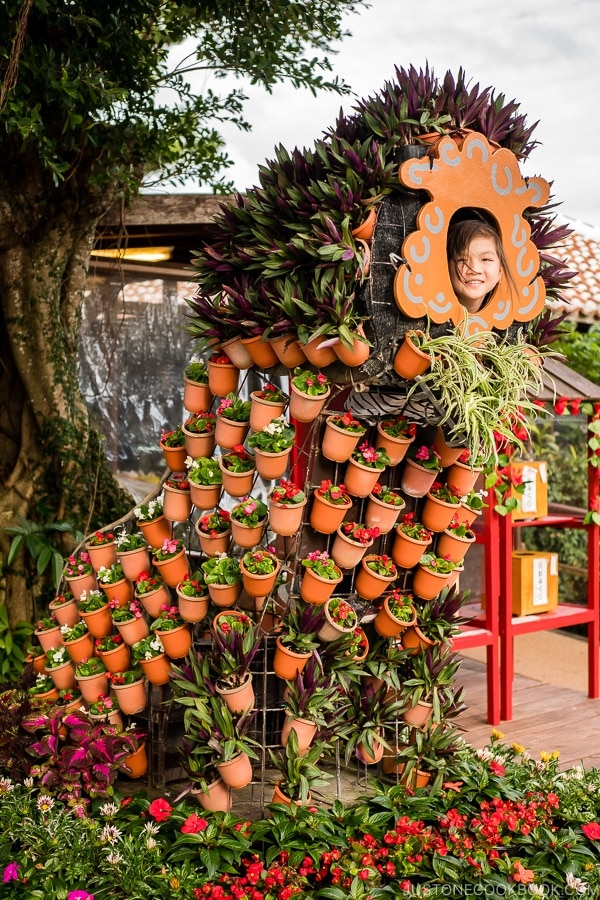 child in a flower arrangement resembling shisa - Okinawa World | justonecookbook.com