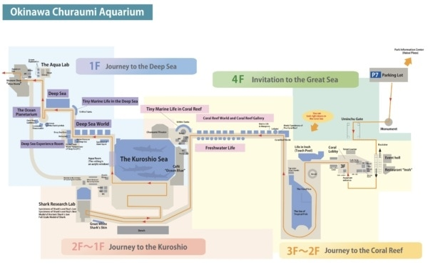 Churaumi Aquarium Floor Guide