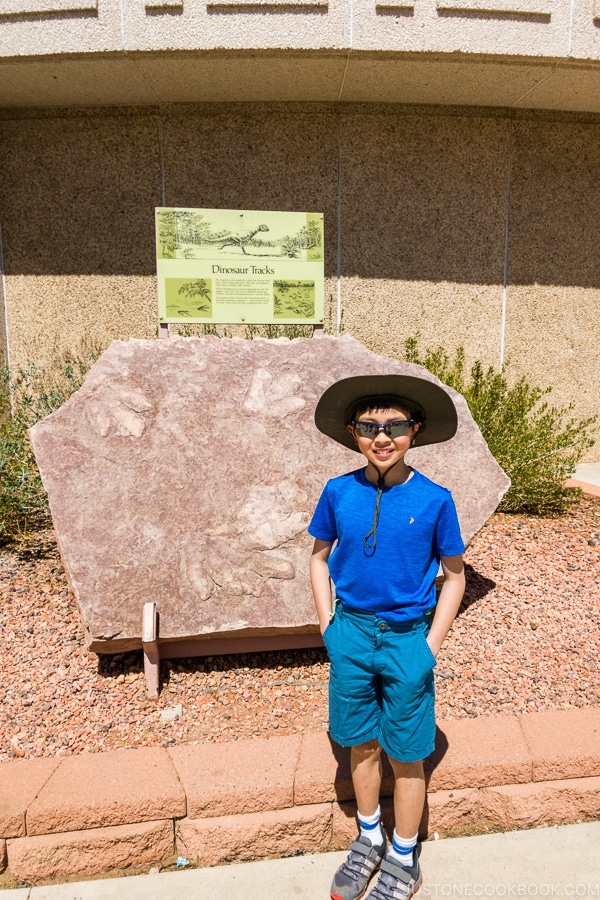 boy in front of dinosaur track - Carl Hayden Visitor Center | justonecookbook.com