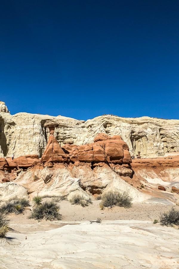 Toadstool Hoodoo trail Kanab Utah | justonecookbook.com