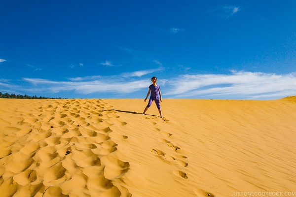 child standing in sand dune - Coral Pink Sand Dunes State Park | justonecookbook.com
