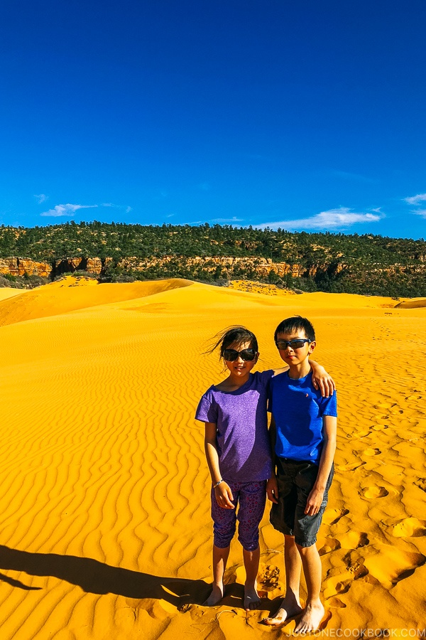 children standing in sand dune - Coral Pink Sand Dunes State Park | justonecookbook.com