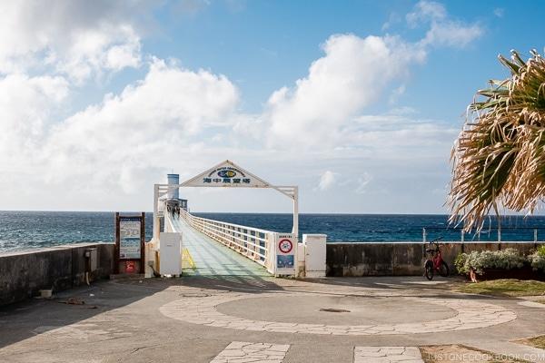 walkway to underwater observatory at Busena Marine Park - Okinawa Travel Guide | justonecookbook.com