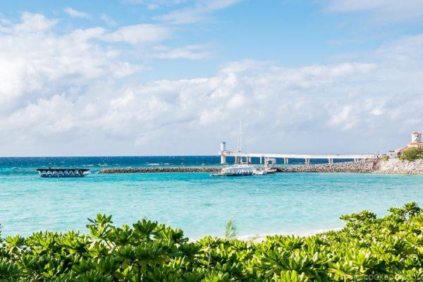 Busena Marine Park | justonecookbook.com