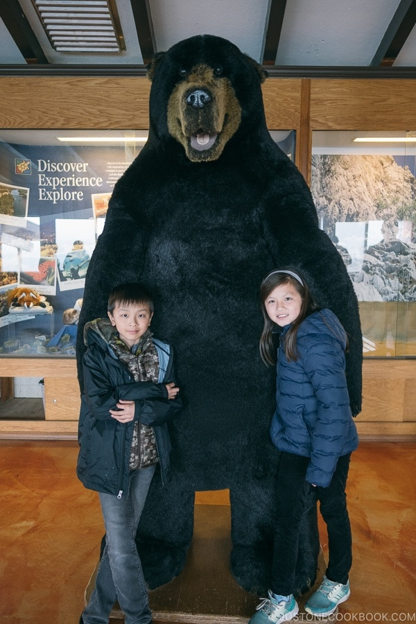Just One Cookbook children standing next to a large bear figure - Lake Shasta Caverns Travel Guide | justonecookbook.com