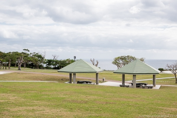 view of the ocean from the park at Okinawa Prefectural Peace Memorial Museum - Okinawa Travel Guide | justonecookbook.com