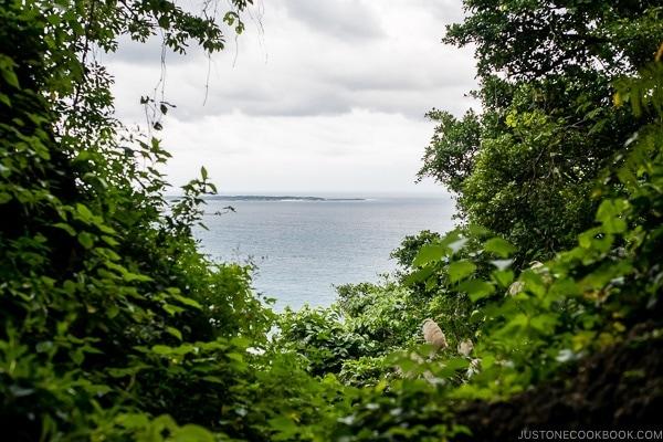 view of the ocean at Seifa-utaki 斎場御嶽 - Okinawa Travel Guide | justonecookbook.com