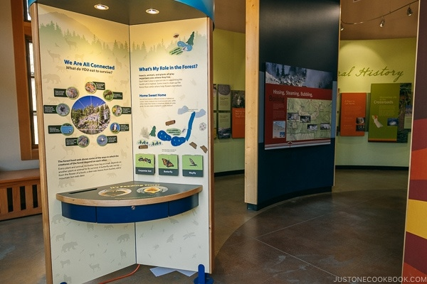 Volcano info and exhibits at Kohm Yah-mah-nee Visitor Center - Lassen Volcanic National Park Travel Guide | justonecookbook.com
