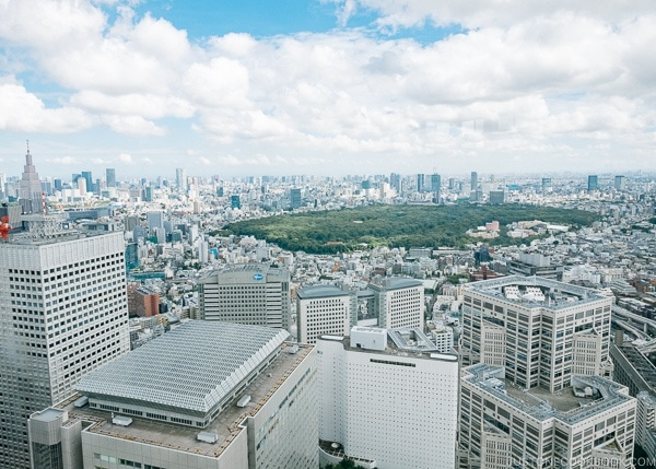 view of Tokyo skyline from Tokyo Metropolitan Government Building - Shinjuku Travel Guide | justonecookbook.com