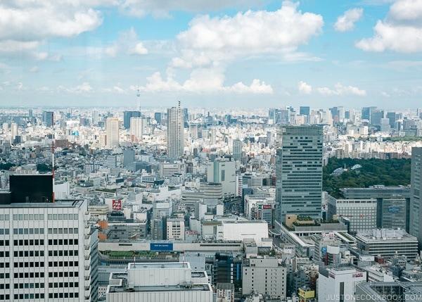 view of Tokyo skyline and Tokyo Skytree from Tokyo Metropolitan Government Building - Shinjuku Travel Guide | justonecookbook.com