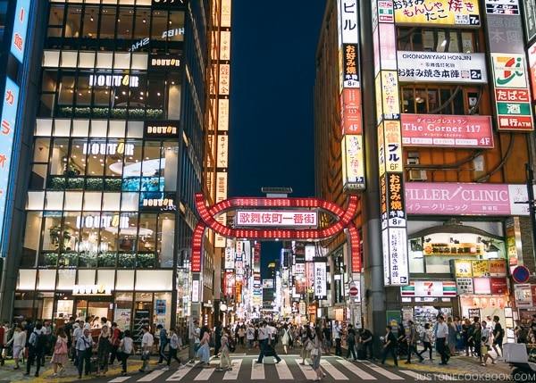 Kabukicho Ichibangai - Shinjuku Travel Guide | justonecookbook.com